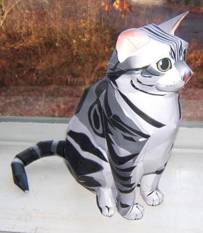 Shy paper cat