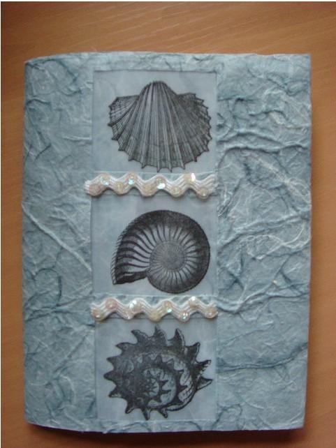 3 Shells Wrap