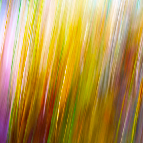 Grass motion blur