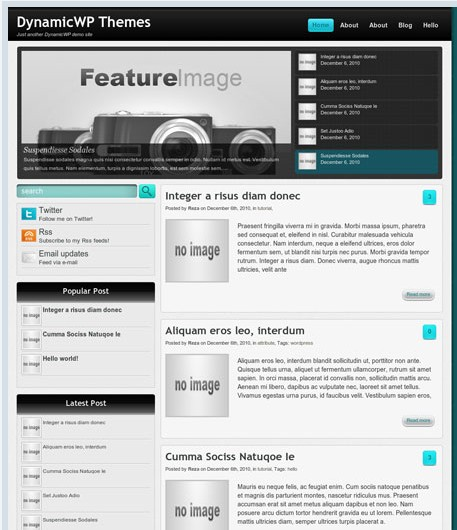 Saga for Personal or Business Theme