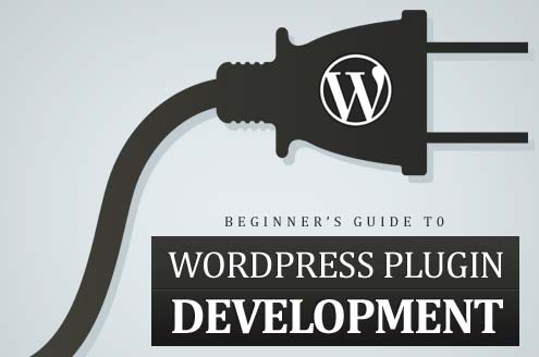 Beginner's Guide To WordPress Plugin Developmen