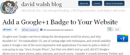 Add a Google+1 Badge to Your Website