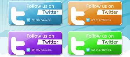 Modern Twitter Box Pack