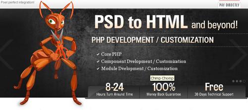 XHTMLChamps -  PSDtoXHTML Service
