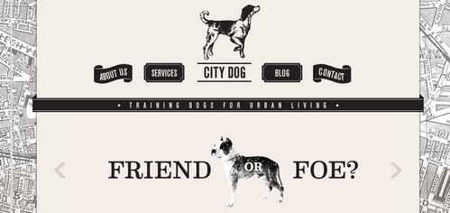 City Dog - expert dog trainers