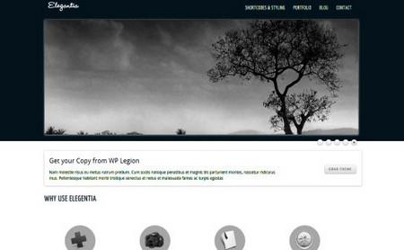 Elegantia. You can use it also as a portfolio theme
