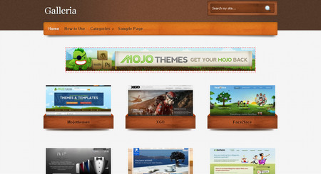 Galleria is a special wordpress theme.