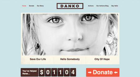 Danko WordPress Theme is ideal for charity organizations.