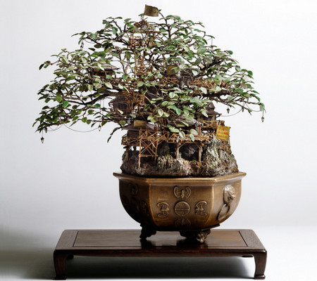 Bonsai Sculptures by Takanori Aiba