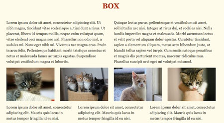 Box CSS – A framework based on box-sizing
