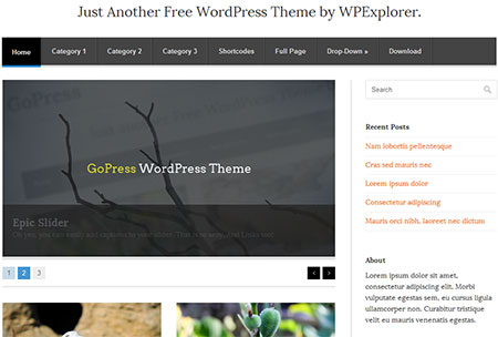 GoPress is a super minimal and lightweight free WordPress Theme