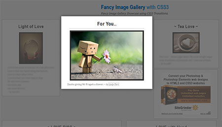 Fancy Image Gallery with CSS3 Transitions