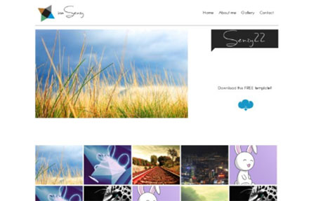 Website psd#5