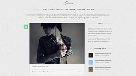 HTML version of premium WordPress tumblog theme Socialike with 3 bonus homepages