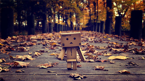 Taking Danbo for a Walk by Asem Bala