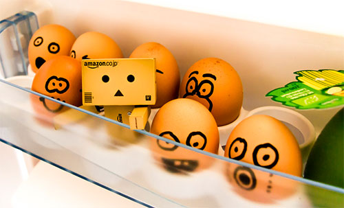 Danbo in the fridge by Matthew Ramone