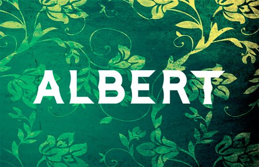 Albert Typeface by Bayley Design