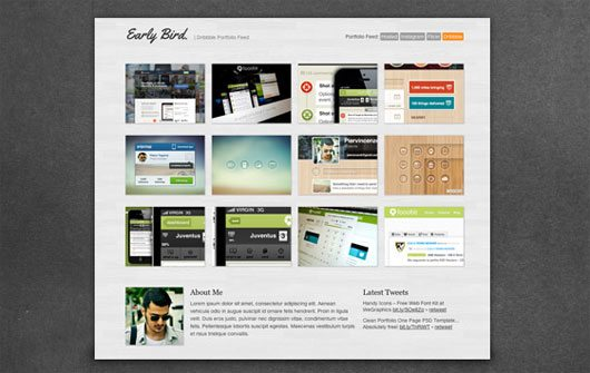 Early Bird – Free One Page Portfolio Template