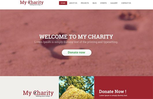 Free Charity Website Template PSD