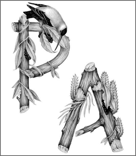 Tropical alphabet by Violaine & Jeremy