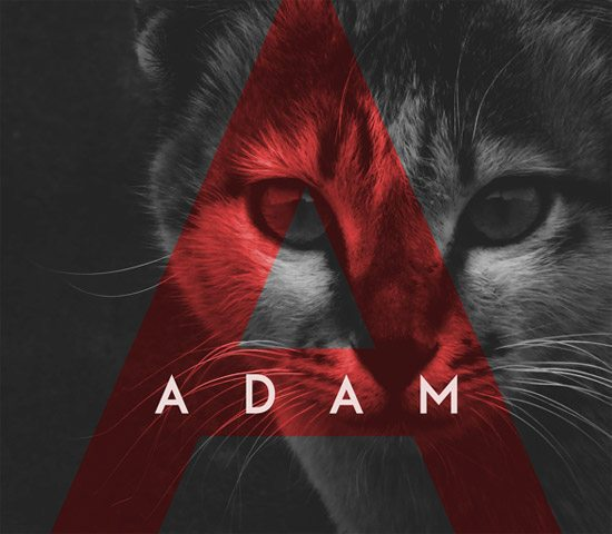ADAM by Shrenik Ganatra