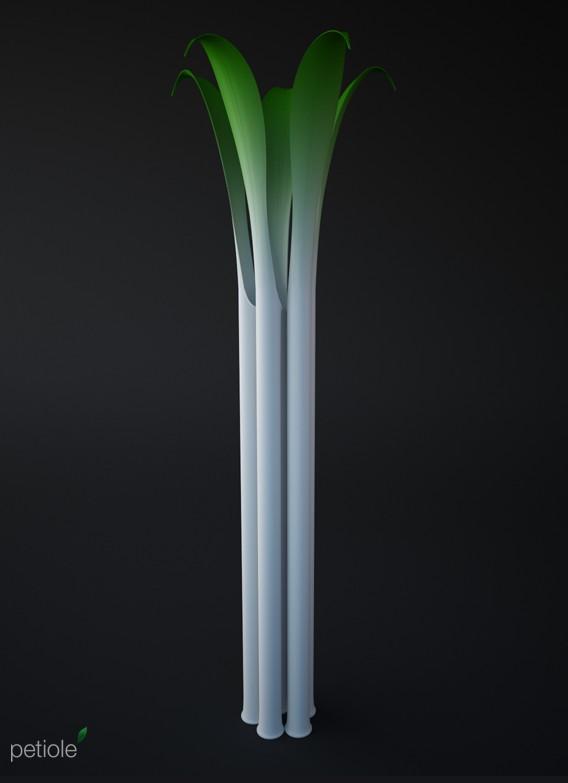 Petiole - vase concept