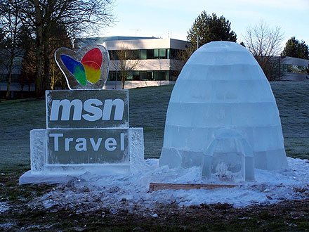 MSN Travel Logo