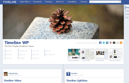 The first timeline wordpress theme2