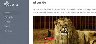 Caprice Homepage & Blog