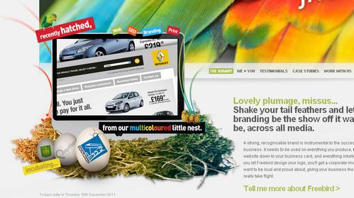 Freebird - Website design