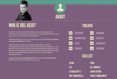 Joel Reed - Interactive Media Professional