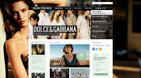 Dead Stocker – Fashion PSD Website Template