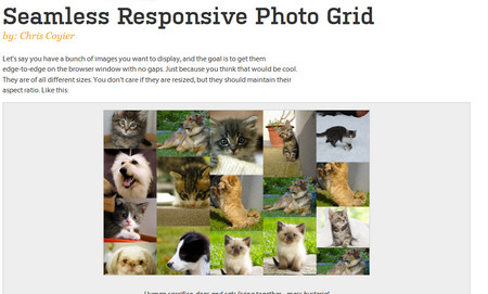 Seamless Responsive Photo Grid