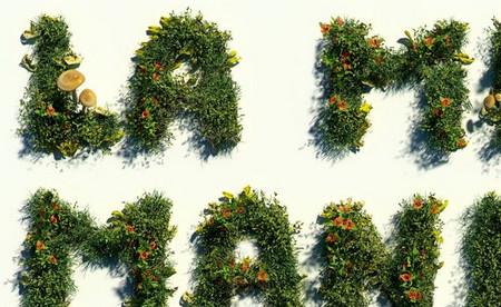 3D Letters No Foc Campaign