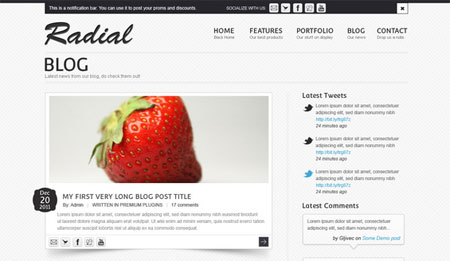 Radial Blog Site Template