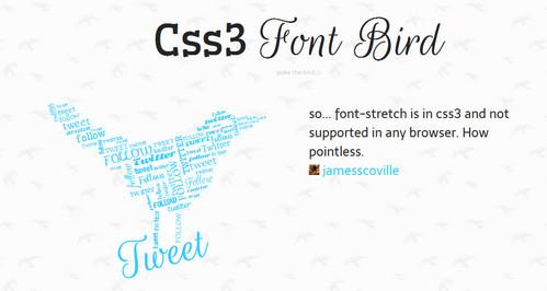 CSS3 Font Bird