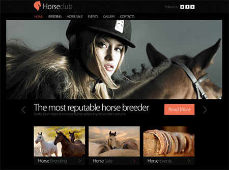 Website Template for Horse Club