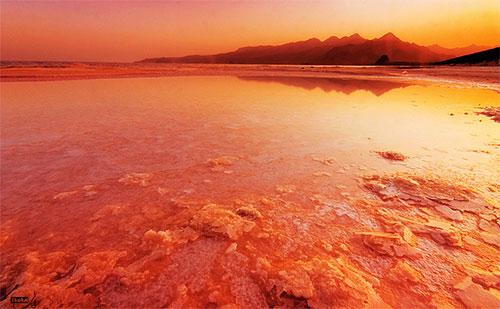 Red Lake by Ali Shokri