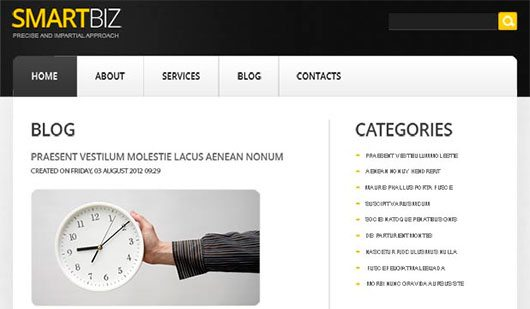 SmartBiz - Quick Run for Your Website