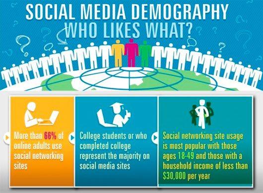 Social Media Demography