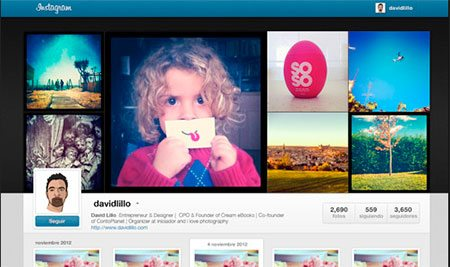 Instagram Profile GUI