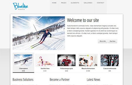 Ultra Clean Blueline HTML5 Template
