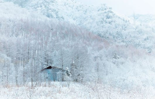 Snowy country by MIYAMOTO Y