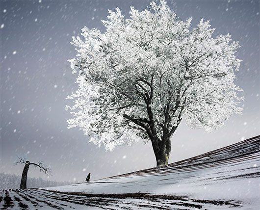 Chasing the winter by Caras Ionut
