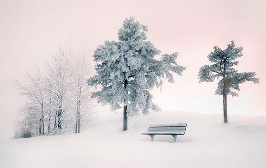 Silence by Mikko Lagerstedt