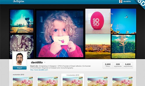 Instagram Web Profiles GUI-PSD by David Lillo
