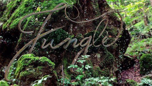 Jungle 3D by Koamis
