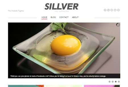 Sillver - Free WordPress Theme