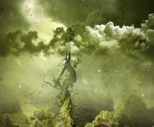 Fairy night. Beanstalk