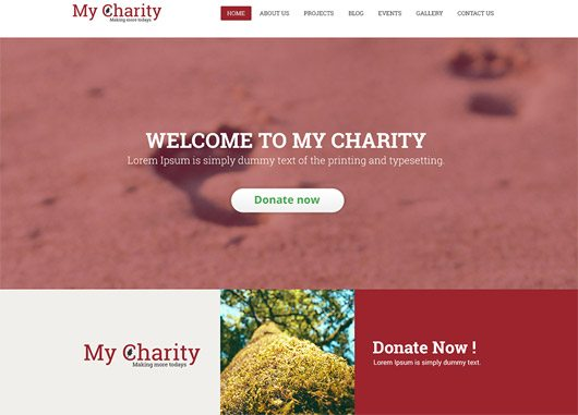 Charity Website Template PSD